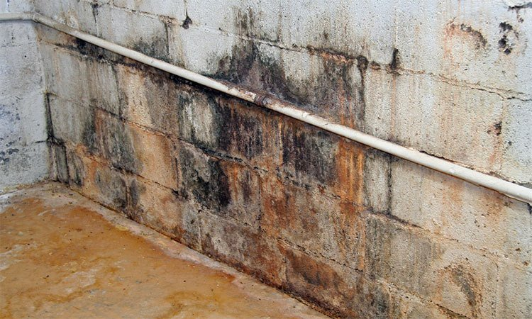 Top Causes of Water Seepage and Basement Leaks in Gaithersburg