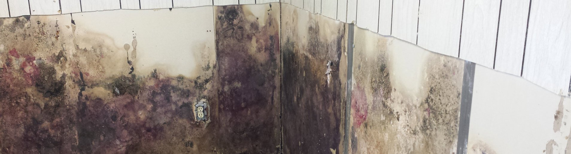 waterproofing structural repair experts triad waterproofing rh triadbasementwaterproofing com Basement Waterproofing Sealer Waterproofing Basement Walls